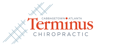 Terminus Chiropractic – Dr. Paul Gross